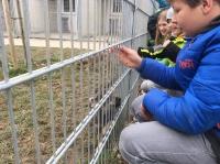 Tierheimbesuch